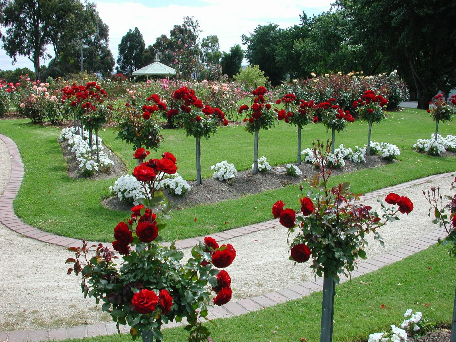 dolina ruža u bugarskoj