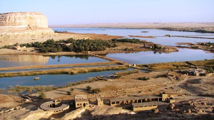 oaza siva egipat